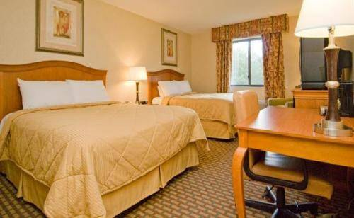 Comfort Inn Ashland Ashland New Hampshire Nh