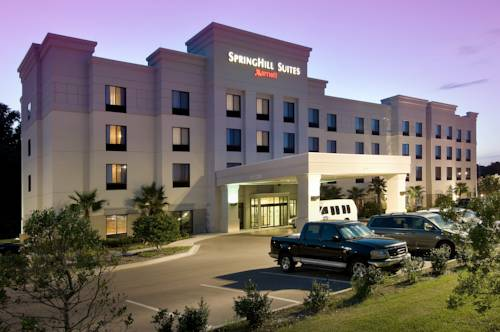 Springhill Suites Jacksonville Airport Jacksonville