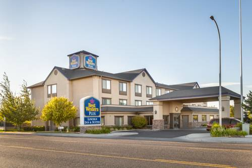 Are Dogs Alloed In All Best Western Hotels