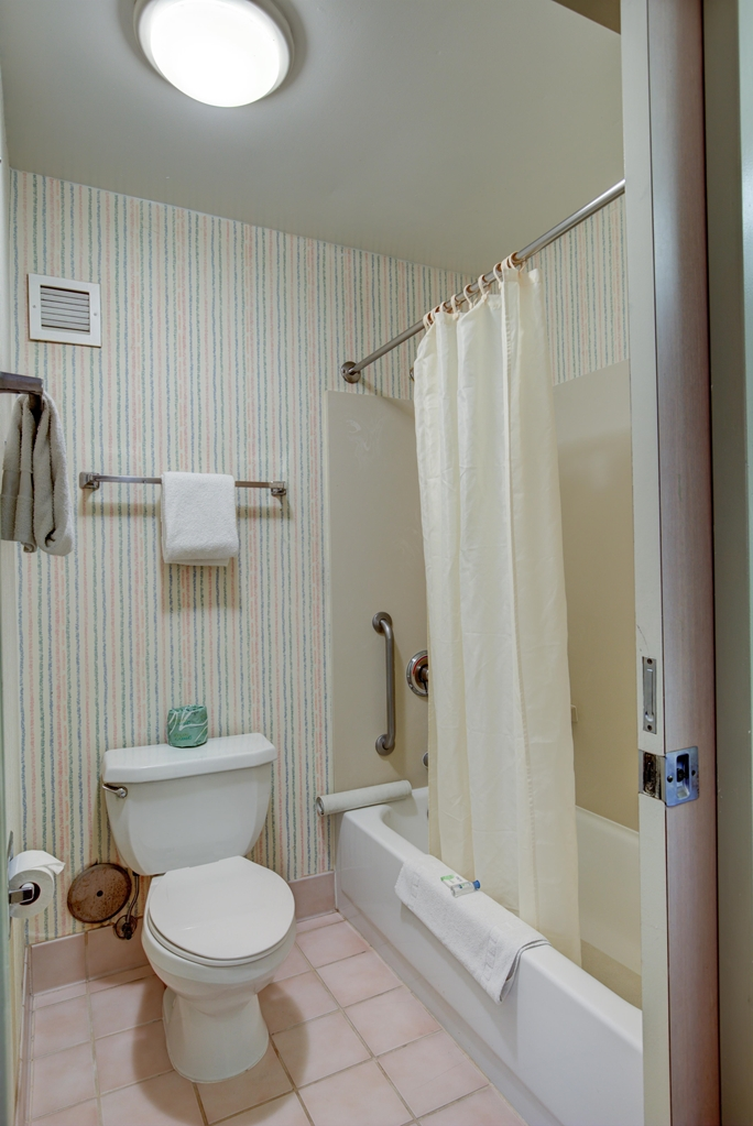 Guest Room Bathroom